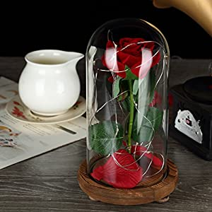 YSBER Beauty & The Beast Red Silk Rose and LED Light with Fallen Petals in Glass Dome on a Wooden Base for Lover, Mother, Girlfriend 5