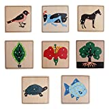 Dovewill Montessori Zoology Botany Materials 8 Plywood Knob Puzzles for Toddler Early Learning Toy