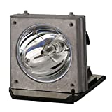 Lutema BL-FP200C Optoma SP.85S01GC01 Replacement DLP/LCD Cinema Projector Lamp with Phoenix Inside