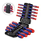 WORKPRO 45-Piece Screwdriver Set - Precision, Slotted & Phillips Screwdriver Kit Includes Bits, Sockets & Folding Rack - Magnetic Tip Keeps Bits Secure - Premium Tool Set