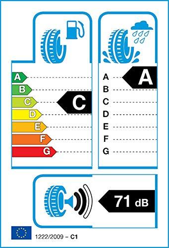 195//60 R15 88V C//A//71 Neum/ático de verano Firestone ROADHAWK Turismo y SUV