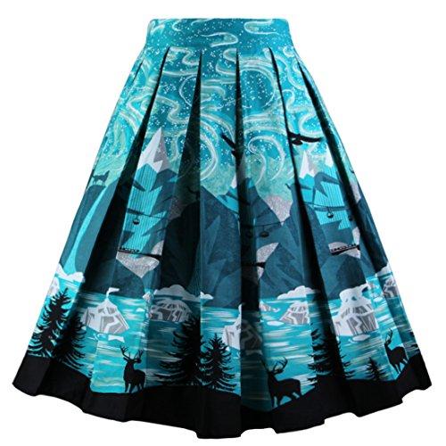 Dressever Women's Vintage A-line Printed Pleated Flared Midi Skirt Dark Night Medium (Womens Skirt Retro)