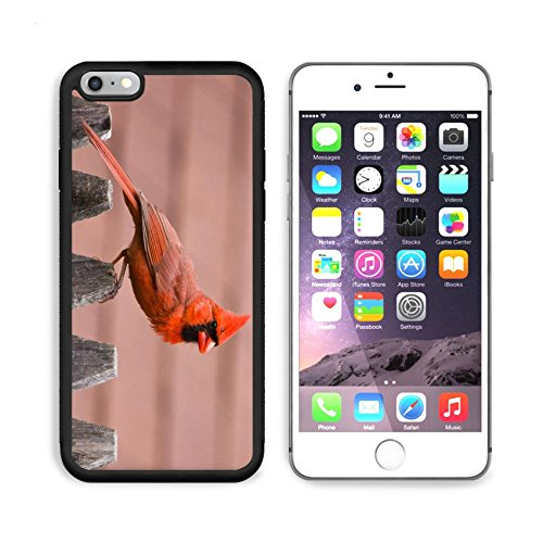 iPhone 6/6s Plus Metal Phone Case,MSD Bumper Custom Alum Case Design for bird nature cardinal wildlife male red wing avian feathers feeder birds backyard songbird perched winter (Back Feeder)