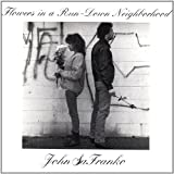 Flowers in a Run-Down Neighborhood by Safranko, John (2002-05-28)