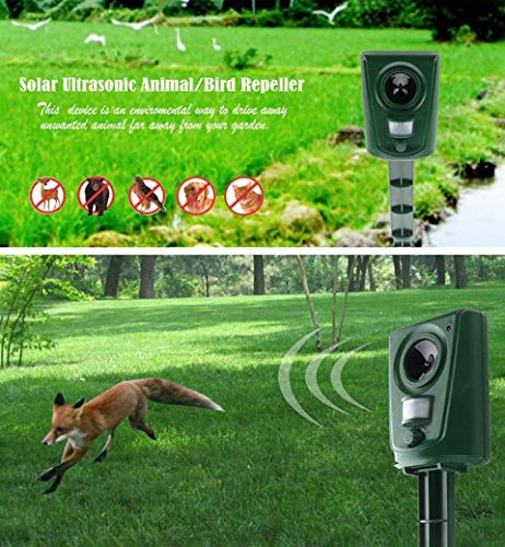 SHOPUS | BX JX Cat Repellent Solar Bird Scarer, Fox