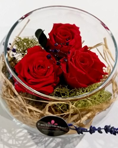 GARDEN SPHERE OF THREE RED ROSES PRESERVED .