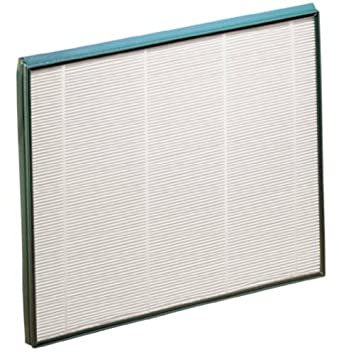 Review Hunter 30940 Replacement Filter
