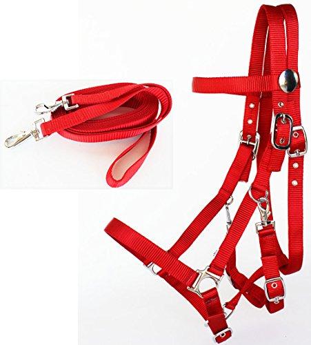 - PRORIDER Horse Western Halter Bridle Noseband Nylon Browband Headstall Reins Tack 60111RD