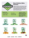 20ct Premium Hemp Gummies Sour Apple Flavor- 50mg