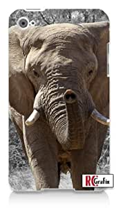 Wild Exotic African Elephant in Water Apple ipod 4 Quality Hard Case Snap On Skin for ipod 4/4G (WHITE)