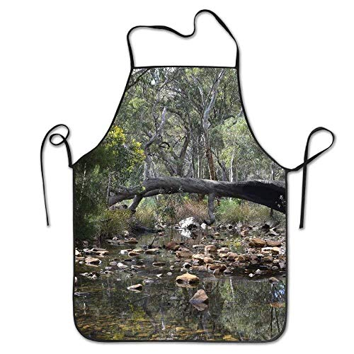 Mydufish Apron Creeks Water Mambray Creek Deluxe Aprons Personalized Printing Kitchen ()