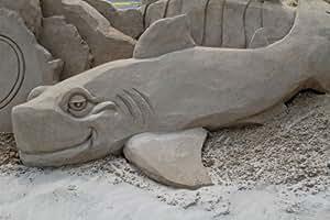 Beach Life – Shark Sand Sculpture