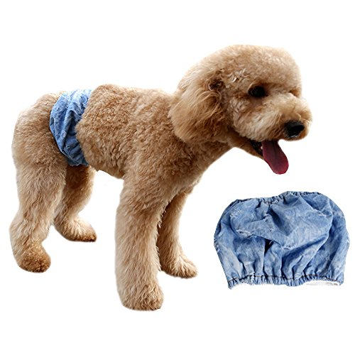 [Stylish Cool Male Puppy Belly Band for Small Boy Dogs Diaper Elastic & Adjustable & Washable Incontinence Wrap (Pack of 1,] (Ups Package Costume)