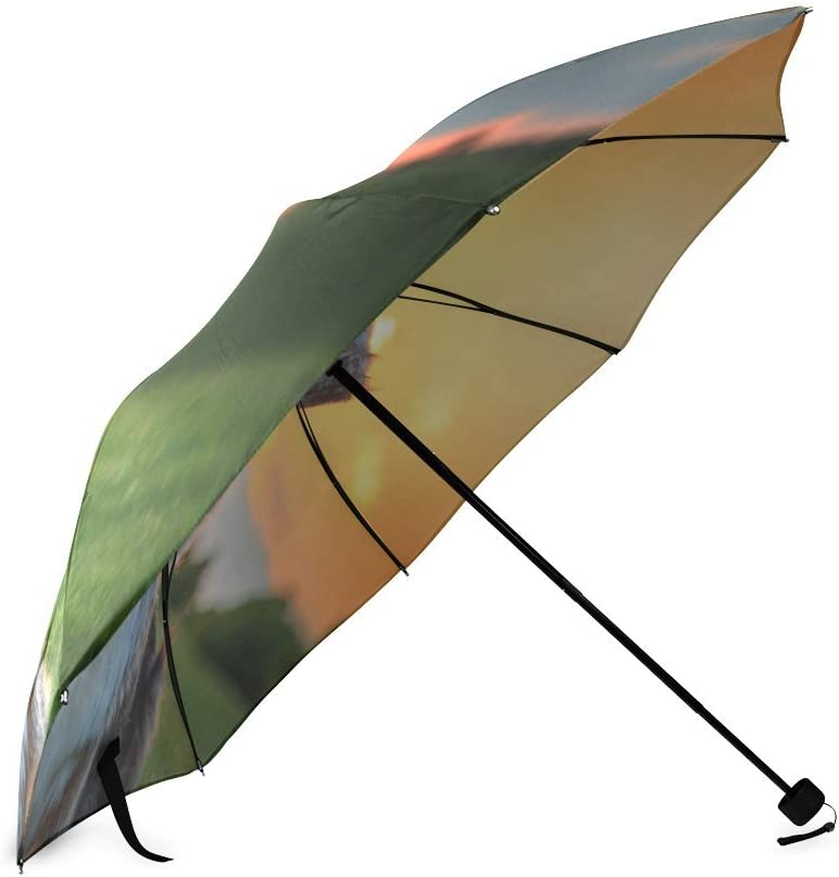 Custom Cute Australian Cattle Dog Compact Travel Windproof Rainproof Foldable Umbrella