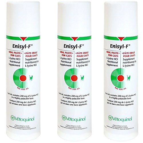 3 Pack EnisylF Oral Paste for Cats 300 mL by Vetoquinol
