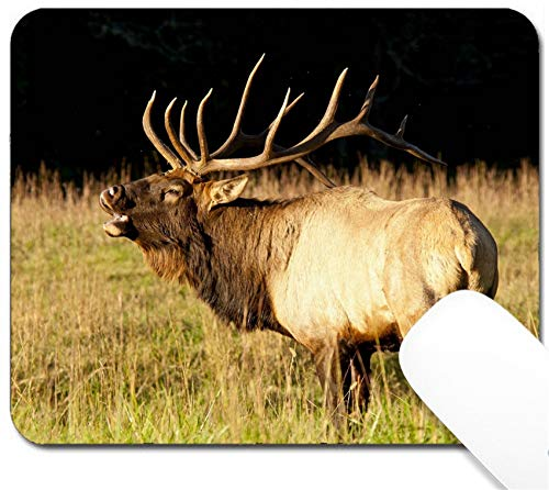 MSD Mouse Pad with Design - Non-Slip Gaming Mouse Pad - A Bull elk Throws Back his Head and Sounds a Bugle Image 19359198 Customized Tablemats