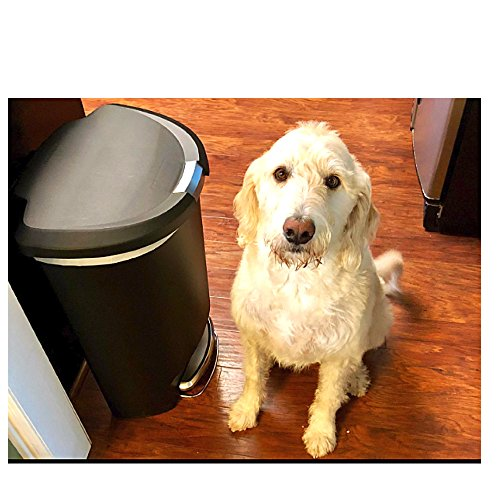 Dog-Proof Trash Can 50 Liter Kitchen Foot Step Tall Lock Lid Garage No Odor & eBook by OIT