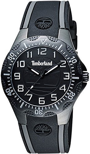 Watch Timberland Dixiville S 14323msb-02 Women´s Black