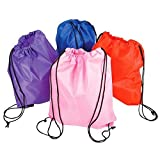 15.5''X13'' ASSORTED NYLON BACKPACKS, Case of 72