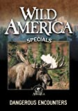 Wild America: Dangerous Encounters