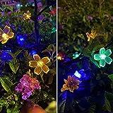 Jack & Rose Solar Lights Outdoor Decorative Solar