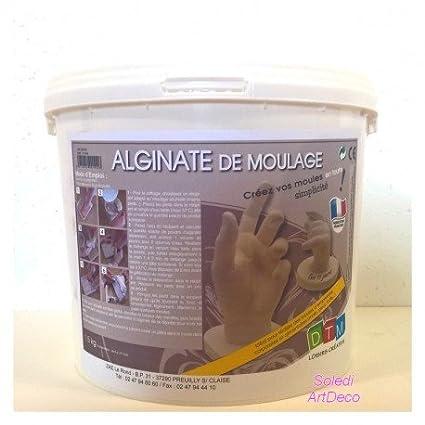 Graine Créative - Polvo de moldeo de alginato, ideal para huellas corporales y alimentarias,