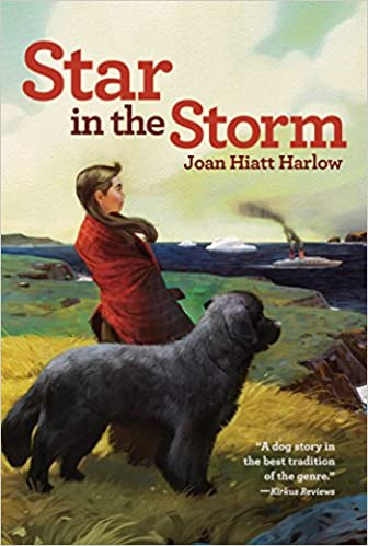 Image result for star in the storm by joan hiatt harlow