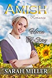 img - for Amish Romance: Home to Stay book / textbook / text book