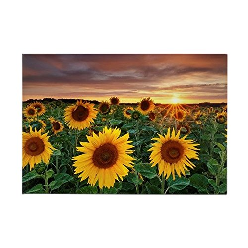 CafePress Fun In The Sun Rectangle Magnet, 2