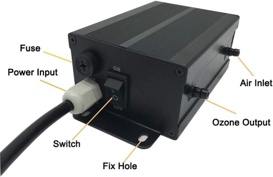 GXHGRASS Purificador de Agua de ozono SPA & Pool Generador de ozono 220V 300Mg Ozonizador Purificador de Agua de Piscina: Amazon.es: Hogar