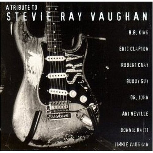 A Tribute to Stevie Ray Vaughan [VHS] (Eric Clapton Tribute To Stevie Ray Vaughan)