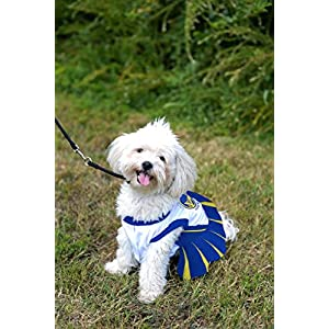 Pets First NBA Golden State Warriors Dog Cheerleader Dress, Medium