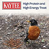 Kaytee 100505655 Mealworm Food Pouch, 17.6