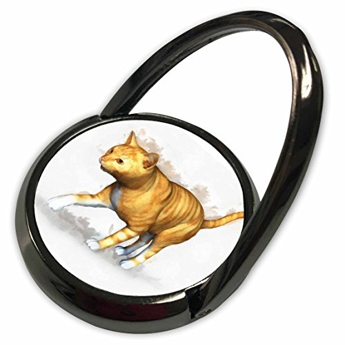 3dRose Boehm Digital Paint Animal - Red Tabby - Phone Ring (phr_41474_1)