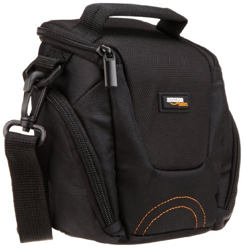 AmazonBasics Fixed Zoom/Compact System Camera Case
