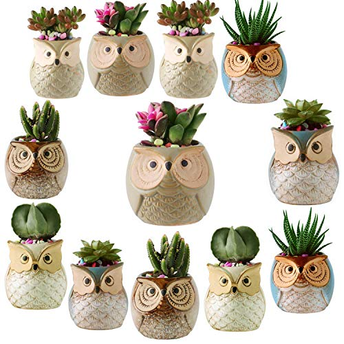 12 Pack 25 Inch Owl Succulent Plant Pots Ceramic Set Cactus Plant PotMini Flower Pot with A Hole Perfect owl Gifts