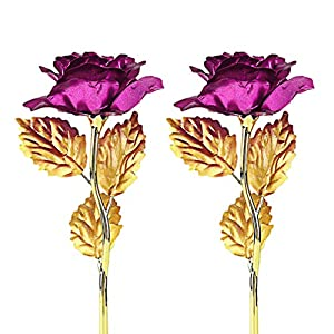 GL-Turelifes 4K Gold Foil Artificial Forever Rose Flower for Wife Lover Women Girlfriend for Wife for Girlfriend Unique Gifts Birthday Gift (Rose Red) 30