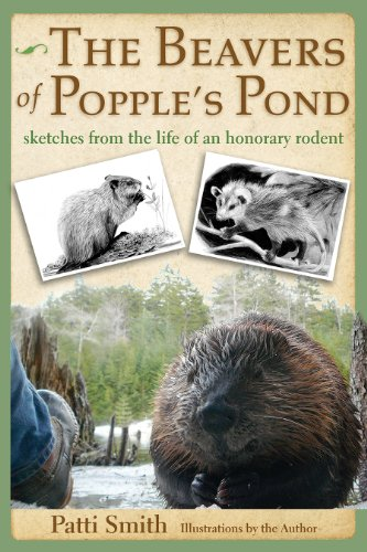Patti Smith - The Beavers of Popple's Pond: Sketches from the Life of an Honorary Rodent