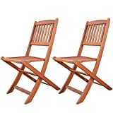 LuuNguyen Patio Outdoor Hardwood Folding Chairs, Set of 2