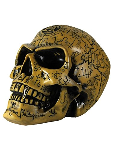 Alchemy Gothic Ancient Rune Engraved Omega Skull -