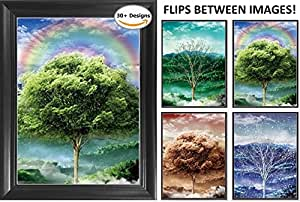 "Four Seasons Framed 3D Lenticular Picture - 14.5x18.5"" - Unbelievable Life Like 3D Art - Changes between different images! - 3D Posters, Art Deco, Unique Wall Art Decor, With Dozens to Choose From!"