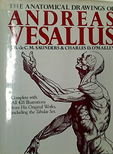 The Anatomical Drawings Of Andreas Vesalius