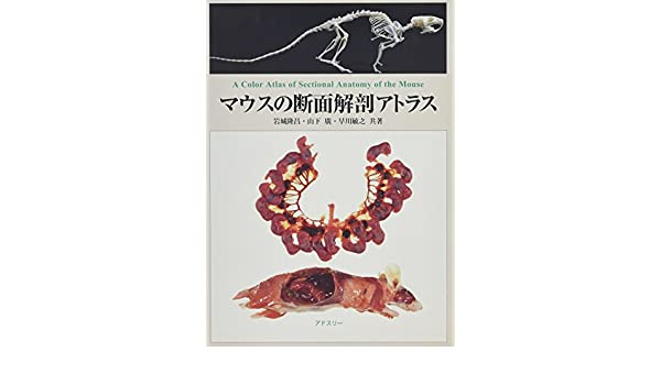 A Color Atlas Of Sectional Anatomy Of The Mouse 9784900659582