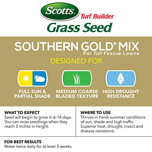 Scotts Turf Builder Grass Seed - Southern Gold Mix for Tall Fescue Lawns, 20-Pound (Sold in select Southern states) by Scotts (Image #1)