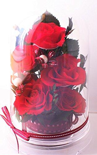 選べる8color ドームケース入りアレンジ プリザーブドフラワー (赤 ed レッド) B07BQ41XV2 赤 ed レッド 赤 ed レッド