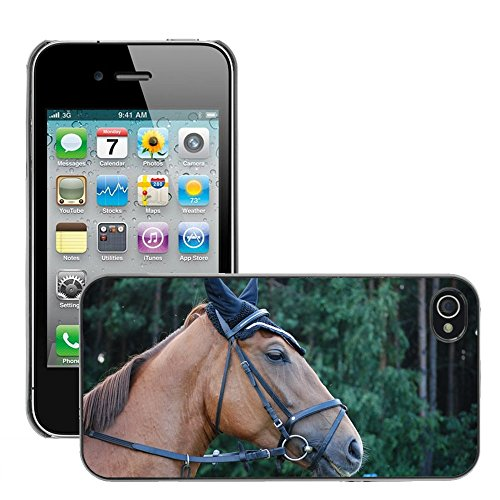 Bild Hart Handy Schwarz Schutz Case Cover Schale Etui // M00134636 Das Pferd Pferde Pferdetier // Apple iPhone 4 4S 4G