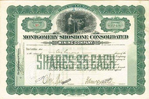 montgomery-shoshone-consolidated-mining-company
