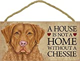 A House Is Not A Home Without A Chessie (Chesapeake Bay Retriever) - 5