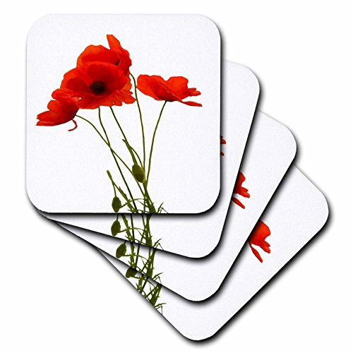 - 3dRose cst_217331_3 Delicate Red Poppies Vector Ceramic Tile Coasters (Set of 4)