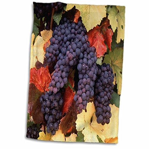 - 3D Rose USA Oregon Willamette Valley Pinot Noir Grape Close up. TWL_192028_1 Towel, 15